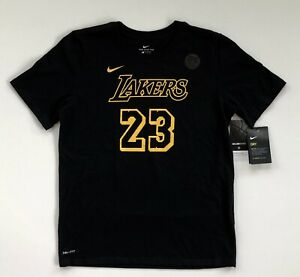 Youth-XL-LeBron-James-Los-Angeles-Lakers-Nike-City-Edition-Performance-T-Shirt