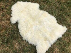 Single Pelt Ivory Sheep Fur Wool 2x3