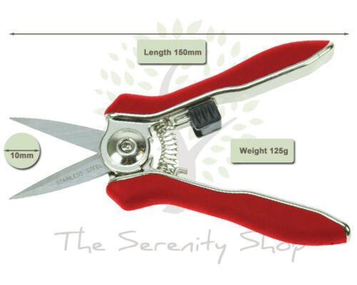 Darlac Mini Snips Bypass Secateur DP71 for Deadheading Herbs /& Flower Arranging