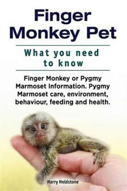 Finger Monkey Pet. What You Need to Know. Finger Monkey or Pygmy Marmoset Inf...