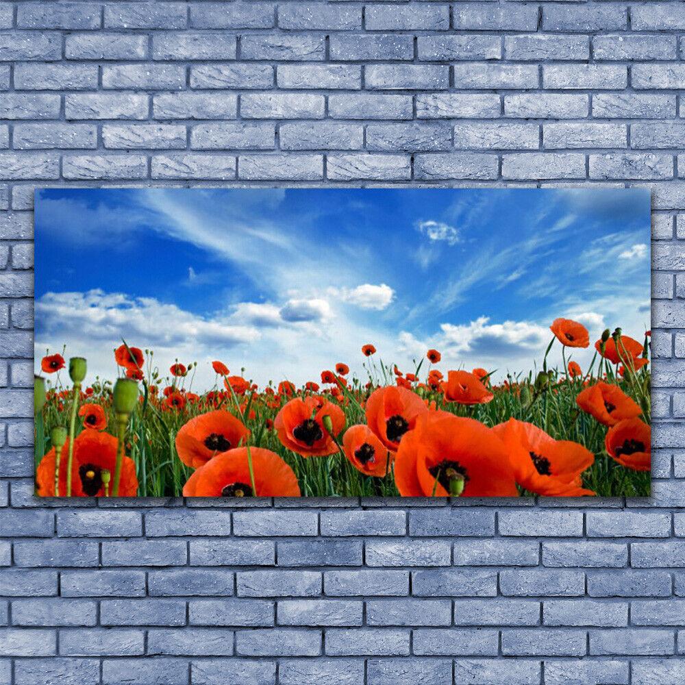 Leinwand-Bilder Wandbild Leinwandbild 140x70 Wiese MohnBlaumen Pflanzen