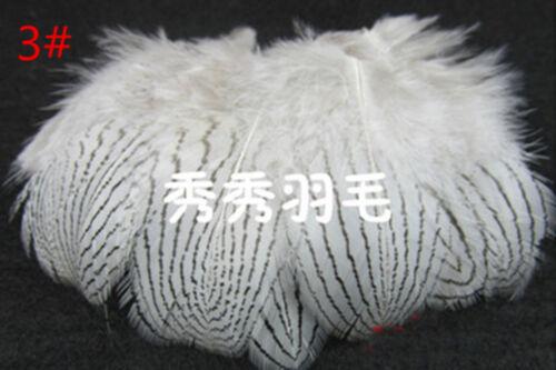 "Wholesale 10-100 PCS White /& Rice white Feathers decoration DIY 5-70CM//2-28 /"""