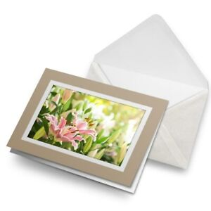 Greetings-Card-Biege-Pretty-Pink-Lily-Flowers-Lilies-24015