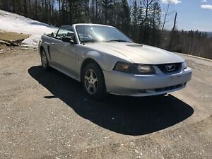 2002 Mustang Convertible 2 Yr MVI Taxes and Transfer Included