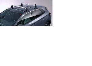 Dachträger Fahrradträger für 2 Fahrräder für Opel Grandland X A18// 75 NEU