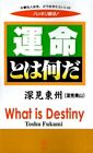 What Is Destiny? by Toshu Fukami 9781583480854 Paperback 1998