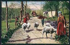 Como Lago Costumi Pecore cartolina QK4984