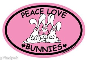 Peace-Love-Bunnies-Pink-Oval-Magnet