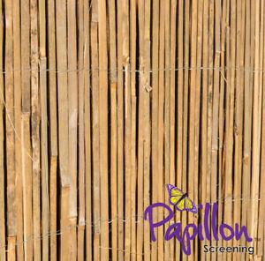 Canisse Bambou Fendu Latte Palissade Clôture Jardin Naturel Décor ...