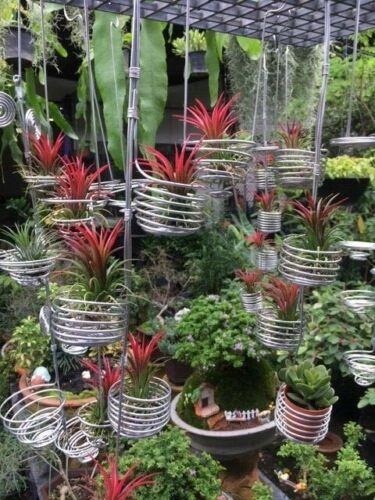 HOME GARDEN DÉCOR CACTUS ORCHID SMALL PLANT POT S 12 ALUMINIUM HANGER BASKETs