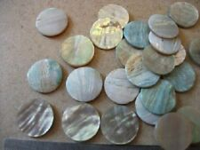 6  15 mm diameter Cream Abalone Button Blanks  - Inlay