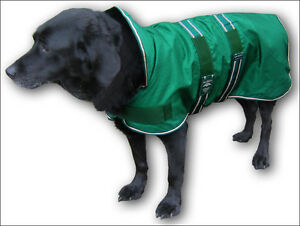 Rainproof-waterproof-Animate-dog-coat