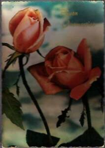 vy2-Postcard-Roses