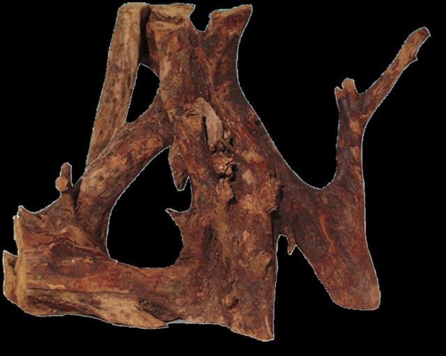 JBL Mangrove Root small 10cm to 25cm aquarium fish natural driftwood bogwood