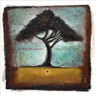 (Falling From) The Nutty Tree by Zoon van snooK (CD, Dec-2010, Mush Records (USA))