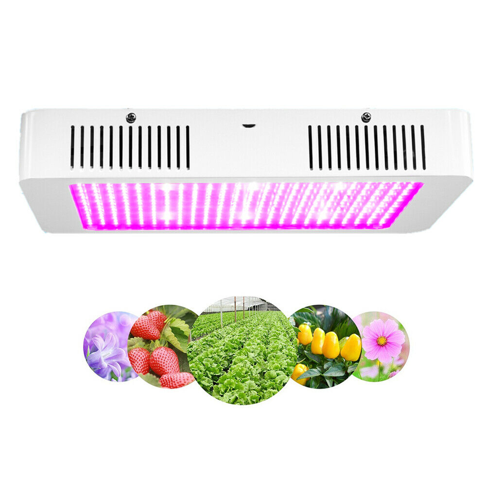 Carambola 2000W Hydro LED Grow Light Full Spectrum for Indoor Plant Veg Flower