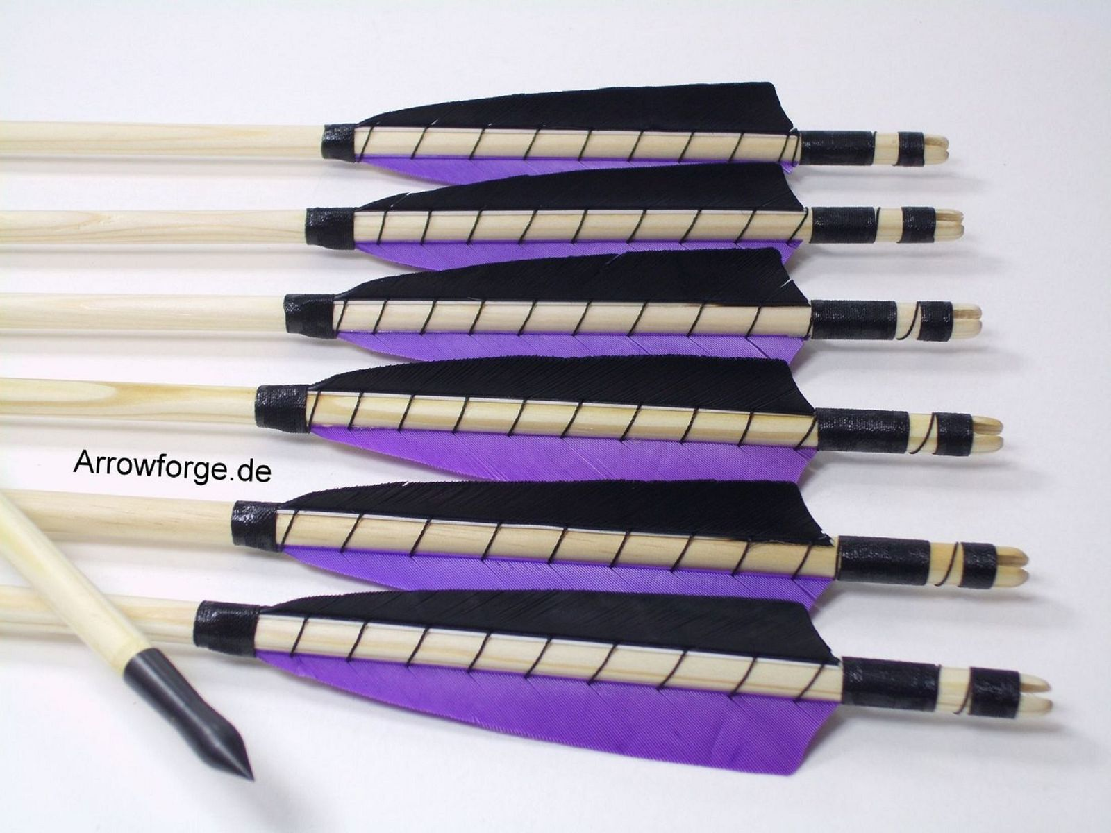 6x wooden wooden wooden Arrows 5  Shield lila self-nock northern pine 50-55  History Point 522a2b