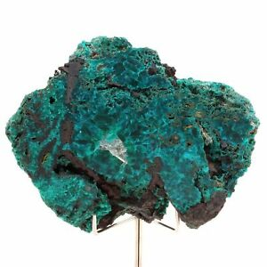 Dioptase-Quartz-1175-0-ct-Renneville-Congo-Afrique
