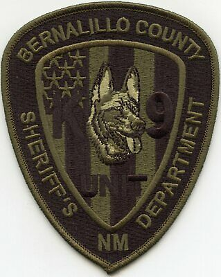 BERNALILLO COUNTY NEW MEXICO NM Police Sheriff Patch SECURITY OFFICER EAGLE ~