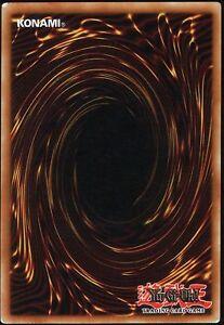 116-Yugioh-Karten-Sammlung-100-Common-10-Rare-5-Holo-1-besondere-Karte