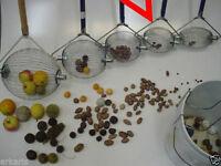 Ex-small Nut Wizard, Rake/ Picker Upper Pecan Acorn,hickory Nut,filbert/hazelnut