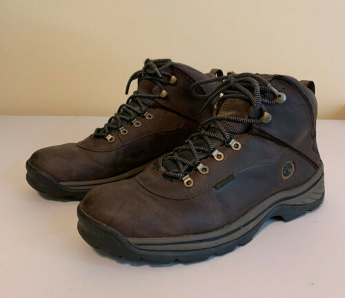 Men's 12M Timberland Hiking Boots, Brown