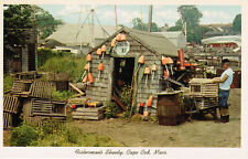 Unused Post Card Fisherman's Shanty on Cape Cod, Massachusetts, Lobsters Buoys