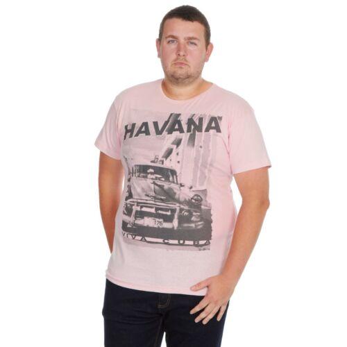 Mens Plus Size T-Shirt Trendy Top Big /& Tall Shirt American Printed Stylish Tee