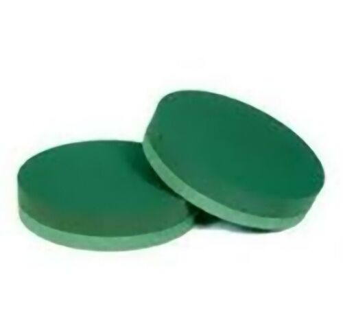 Floristry oasis foam Posy Pads x2 10 inch waterproof polymer base for pinning to