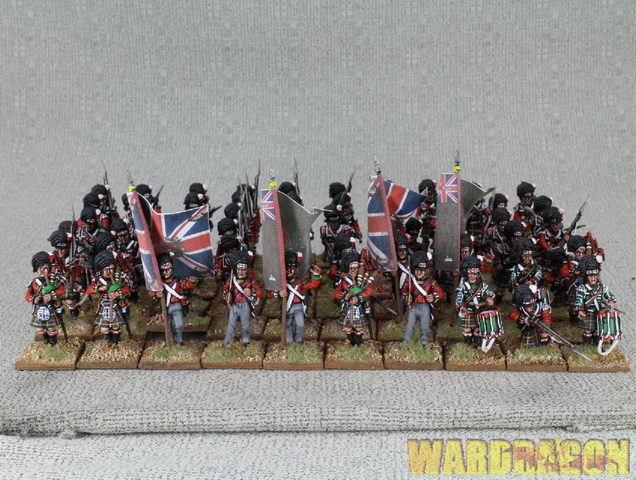 WDS painted napoléoniennes britannique Highlanders 79th Regiment of Foot (Cameron) e29
