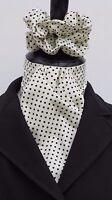 Ready Tied Cream & Navy Blue Pin dot Cotton Dressage Riding Stock & Scrunchie -