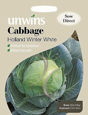 Unwins Pictorial Packet - Vegetable - Cabbage Holland Winter White - 200 Seeds