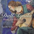 Music For Lute von Sandro Volta (2014)