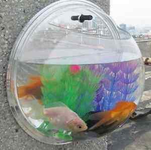 New Plant Wall Hanging Bubble Aquarium Bowl Fish Tank