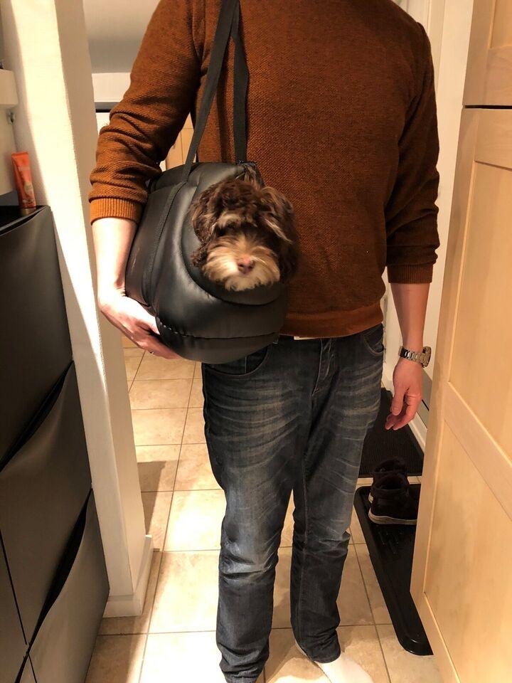 Hundetaske, Bæretaste