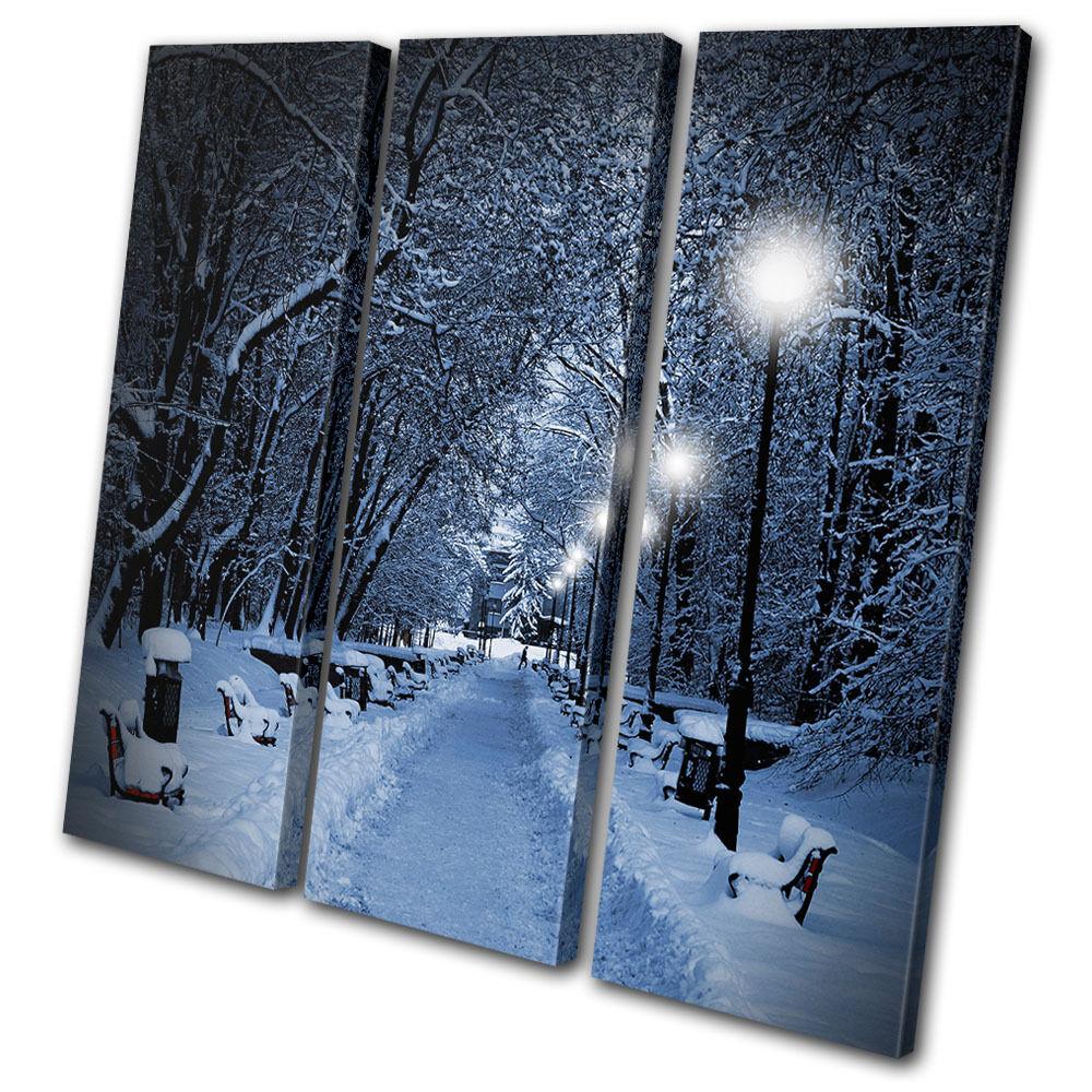 Landscapes Snow Scene park park park TREBLE TELA parete arte foto stampa 60d5f4