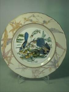 Royal Worcester SCRUB / FLORIDA JAY Ltd Ed Plate James Audubon Birds of America