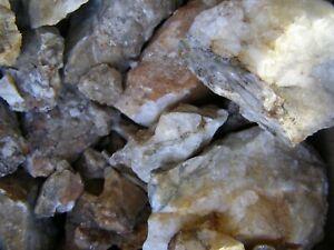 25 Pounds Northern Nevada Quartz Gold Ore Ebay