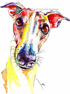 Greyhound-Whippet-Lurcher-art-print-painting-poster-Mounting-Options-Available