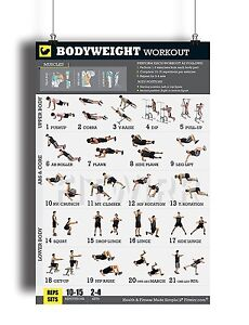 "body weight exercises poster for men 18""x24"" full color"