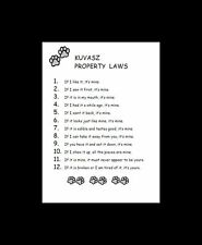 Kuvasz Dog Art Print - Matted - P/L