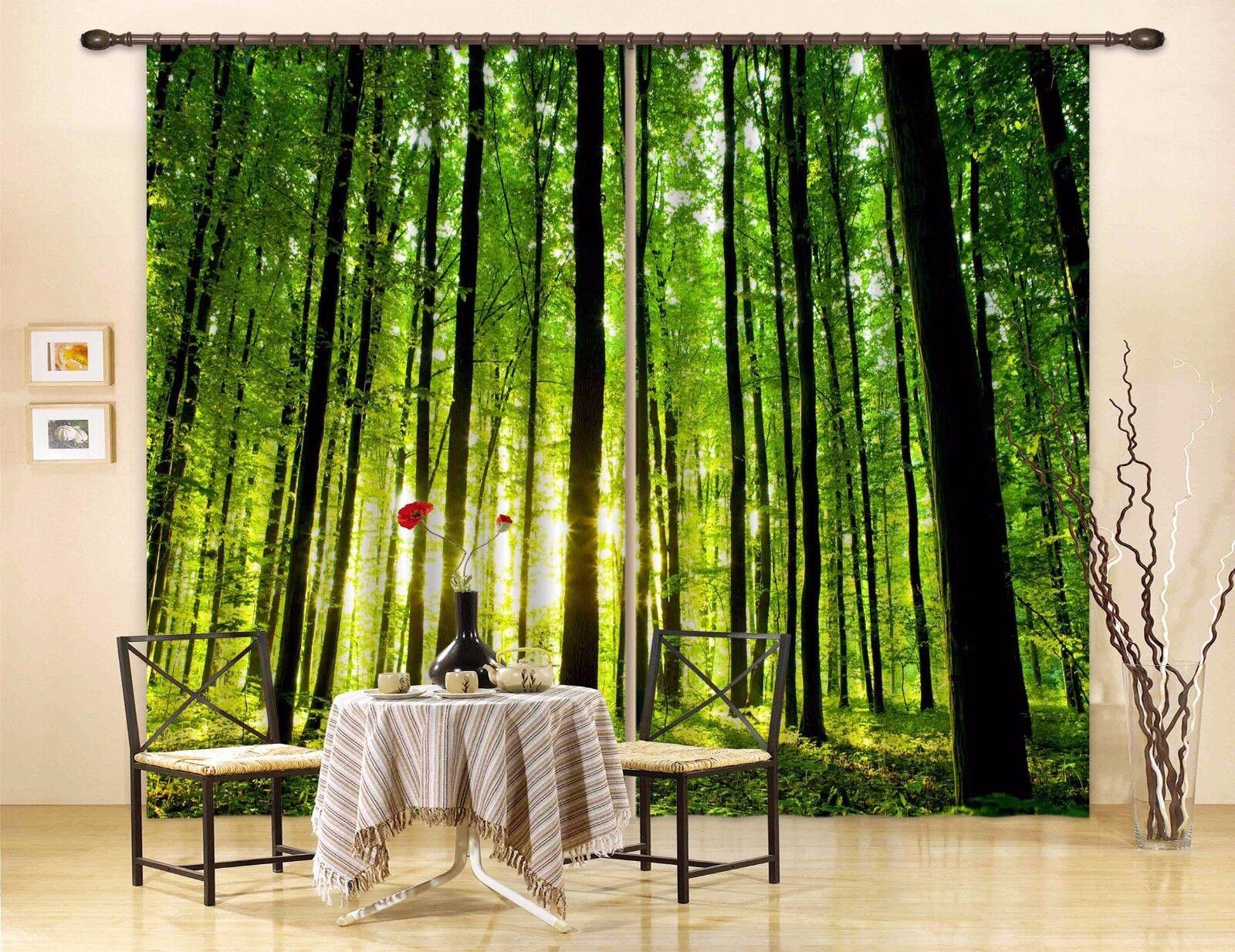 3D Luz de Woods 643 Foto Impresión De Cortina Tela Cortinas Blockout Ventana CA Carly