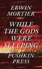 While the Gods Were Sleeping, Erwin Mortier, New Book