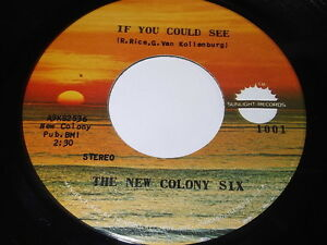 The-New-Colony-Six-If-You-Could-See-Roll-On-45