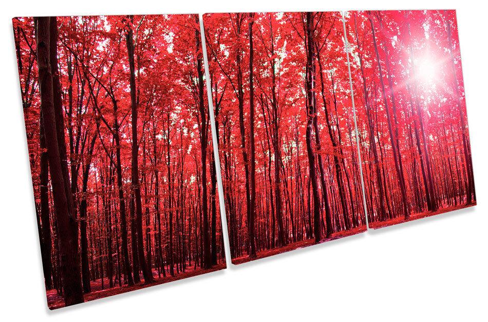 Foresta Sunshine PAESAGGIO ROSSO triplicare triplicare triplicare CANVAS Wall Art Print Picture 49553c