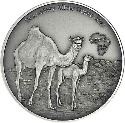Praktisch Kamerun 1000 Francs 2019 Dromedar Silver Ounce Antique Finish Silbermünze