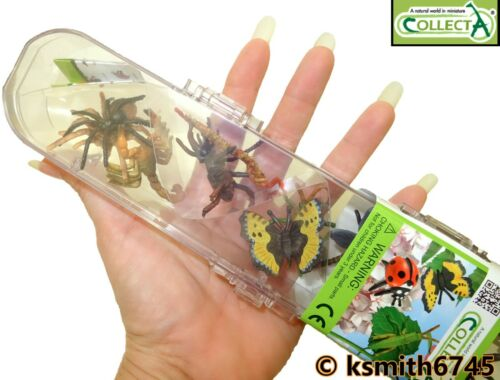 TUBO CollectA insetti in Plastica Giocattolo Animale Selvatico 12 x Bug Bundle Mantis SPIDER NUOVO