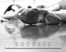 Ballet Dance Motivational Poster Art Print Shoes Flats Tutu Leotard Skirt MVP308