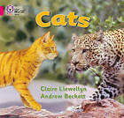 Cats: Band 01B/Pink B by Claire Llewellyn (Paperback, 2005)