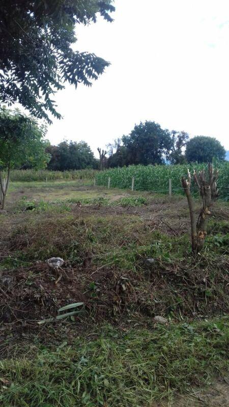 terreno en Cuilapam de Guerrero, 615 m2 $300,000 negociable